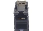 59 2X1 插座 无隔片(香菇脚)8P