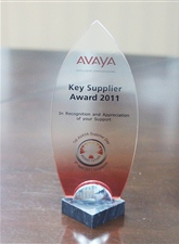 "2011 was awarded as ""main supplier prize"" by AVAYA."