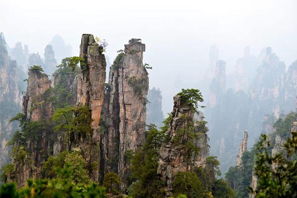 摄影作品:张家界的山